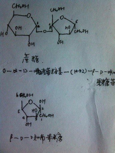 β-d-呋喃果糖的结构式图中给出,蔗糖的结构式图中给出.