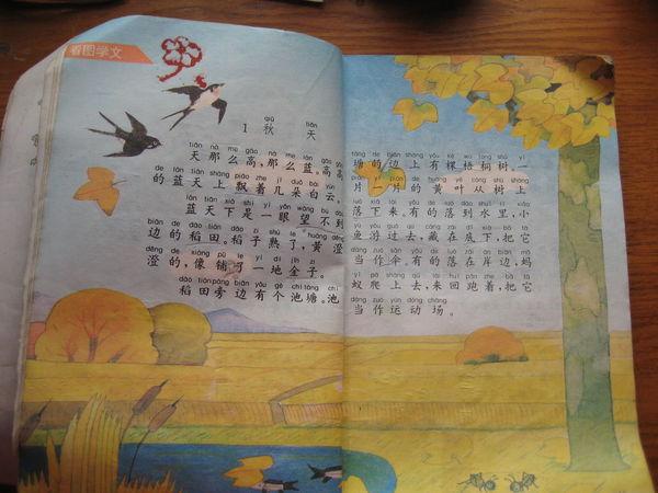 求九十年代小学课文《秋天》插图!