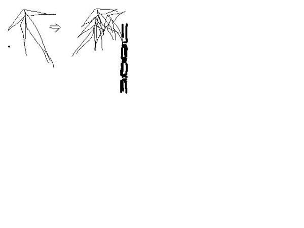 我想用铅笔画竹子,怎么画,主要是叶子怎么画