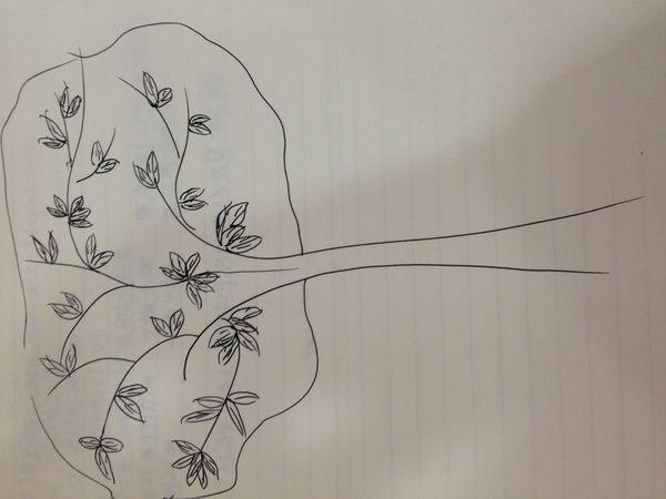 我画了一棵树,请帮我分析一下