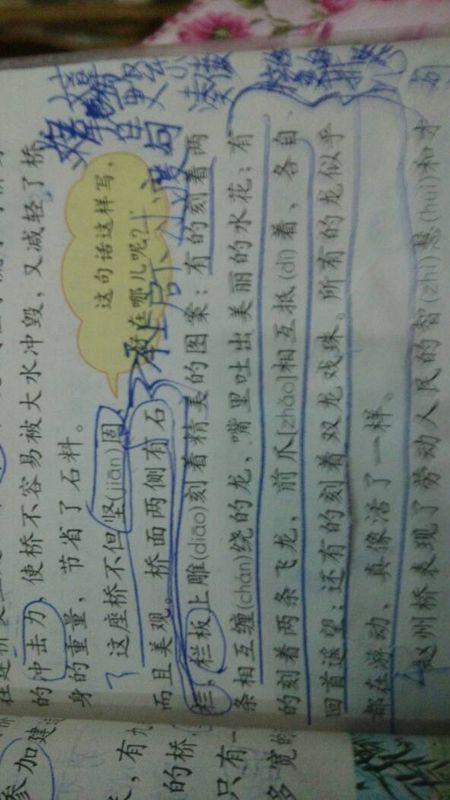 小学三年级语文第19课《赵州桥》第三自然段,介绍了赵州桥的(____)