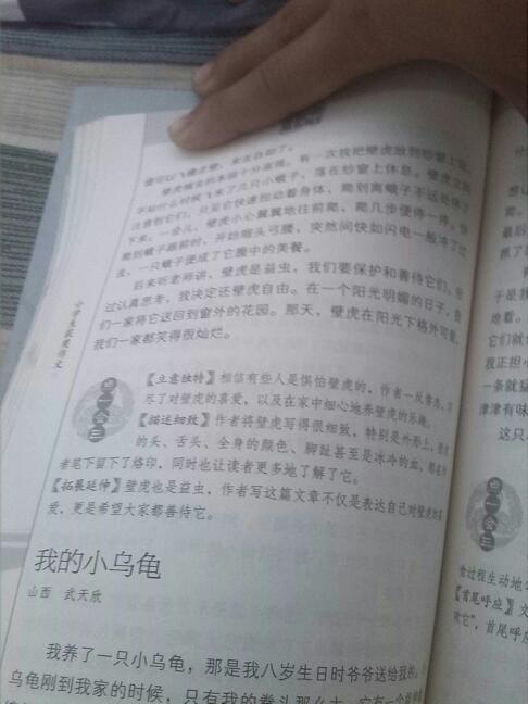 介绍一种动物的作文,150字