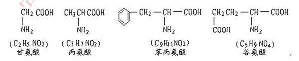 是     肽 该多肽进行水解时,需要       个水分子,得到     个谷氨酸图片